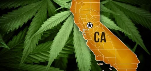 How to Legally Grow Marijuana in California