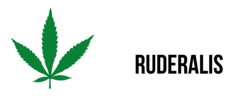 Cannabis Ruderalis Growing Tips