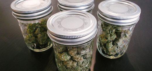 How to Extend the Shelf Life of Marijuana
