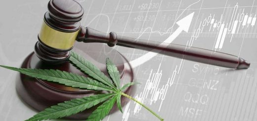 Implications of Legalizing Cannabis