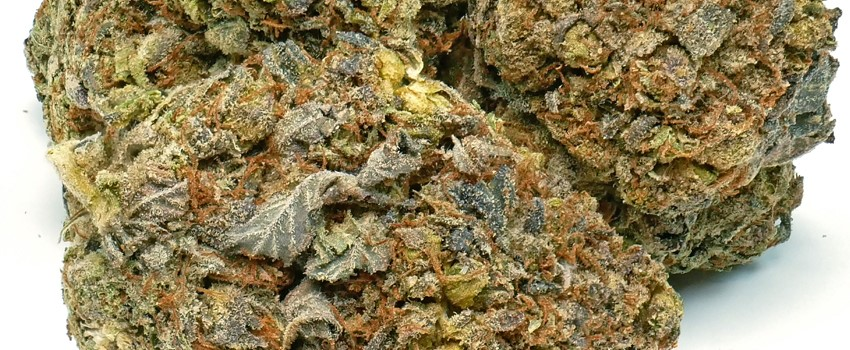 Death Bubba Medical Use and Benefits