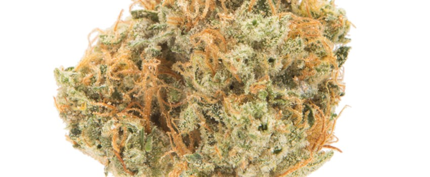 Sour Tangie Medical Use and Benefits