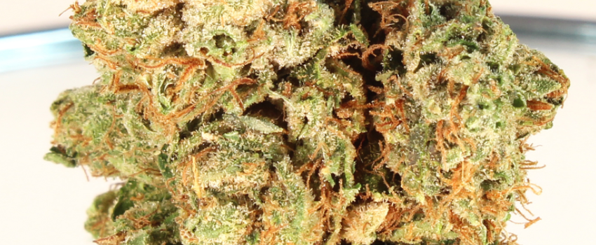 Jupiter OG Medical Use and Benefits