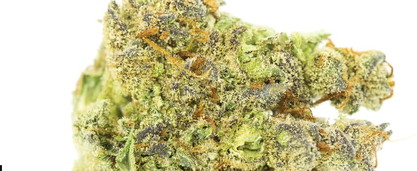 Kosher Tangie Medical Use and Benefits