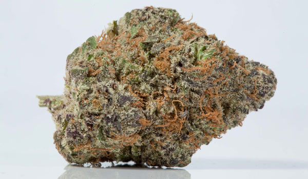 Lavender Jones Strain Effects