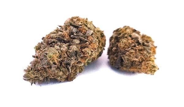 Lavender Jones Strain Medical