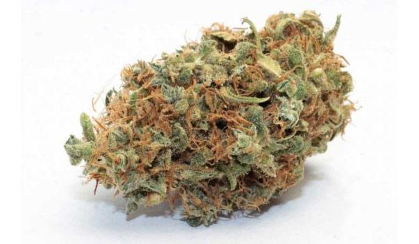 Lemonberry Strain Medical